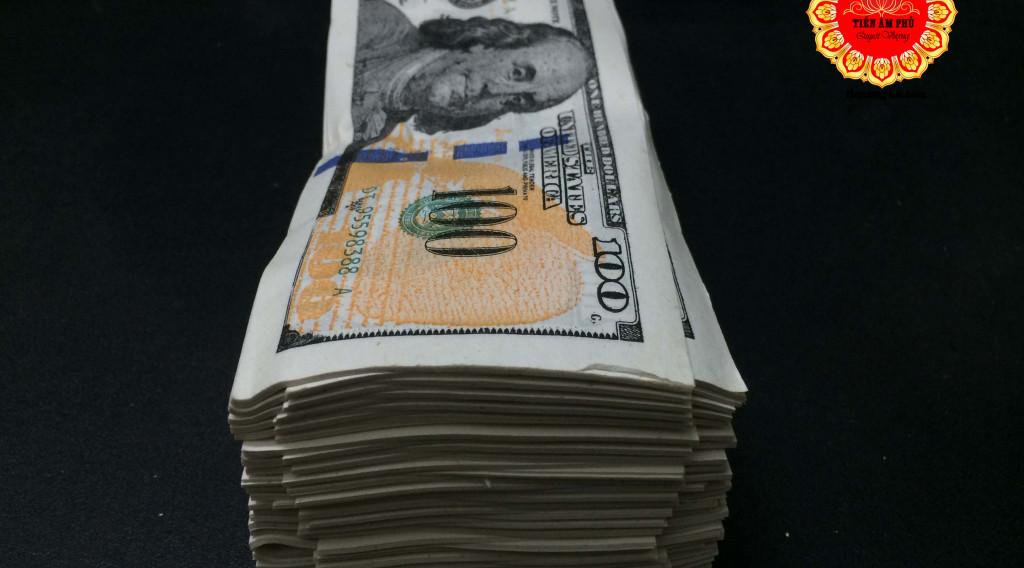 Phân loại tiền đô la âm phủ