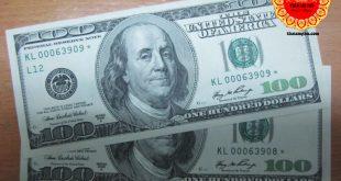 Giới thiệu về tiền đô la âm phủ và cách phân loại