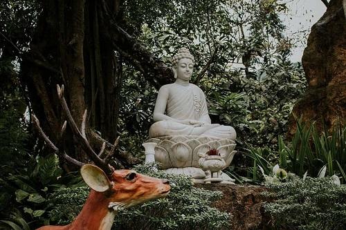 khuôn viên chùa huyền không ở huế
