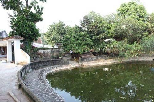 khu sân sau chùa láng